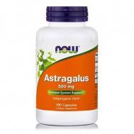 ASTRAGALUS 500 mg - 100 Caps