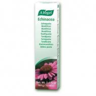 Echinacea toothpaste 100gr (Φυτική οδοντόπαστα από φρέσκια εχινάκια για ουλίτιδα_ αιμορραγία_ ατροφία)*
