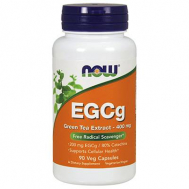 EGCg GREEN TEA EXTRACT 400 mg (50% ECGg, 98% Polyphenols) - 90 Vcaps®