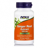 GINGER ROOT EXTRACT 250 mg - 90 Vcaps®