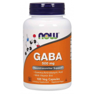 Now Foods GABA 500mg (+ B-6 2 mg) - 100 Caps